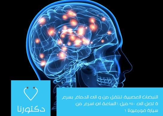 النبضات العصبية تنتقل من وإلى الدماغ بسرعة تصل الى 250 ميل \ الساعة اي أسرع من سيارة فورميولا 1