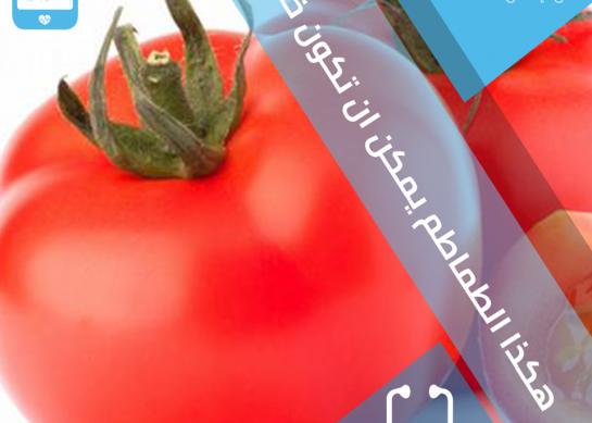اضرار الطماطم